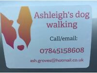 Ashleighs Dog Walking Services