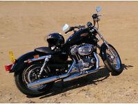 Harley Davidson 2009 Sportster 883cc Vivid Black