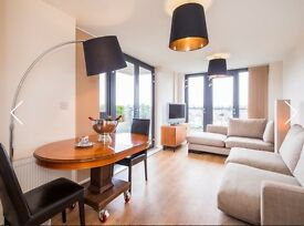 One bedroom flat in Chiswick/zone2 short term