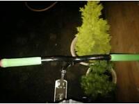 Custom mfx scooter