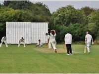 Cricket player cricketer