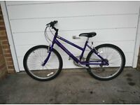 Girls Raleigh Bike - Purple
