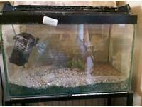 Fish tank and equipment various