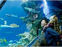 See life aquarium London 4 entry tickets