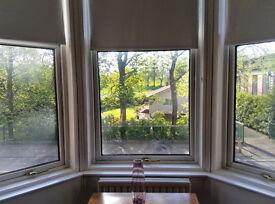 Large 1 bed flat, 1st floor, Full Refurb, Overlooking Beautiful Tollcross Park £465pcm.