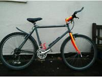 Marin mens bike