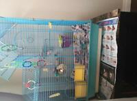 2 budgies with beauti ful cage