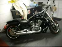 Harley Davodson vrod muscle