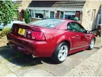 MANUAL 40th Anniversary V8 Mustang