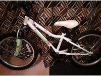 apollo moonstone bike 20 inch