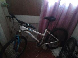 reebok female bike