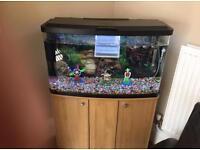 Marina Fish Tank 90L
