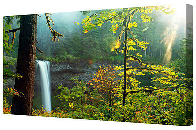 Majestic Forest Waterfall Canvas Picture