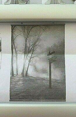 Alu Posterleiste Klemmschiene Plakathalter Spuckschutz bis 80 cm Breite