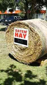 Oaten hay delivered to your door Huntly Bendigo Surrounds Preview
