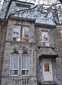 2 ½ Apartment Available Immediately McGill Ghetto