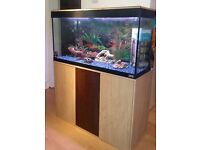 Great Condition Fluval Fish Tank 125 litres!