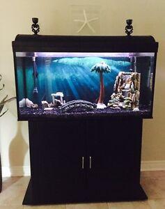 FISH TANK $500 OBO