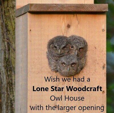 Veteran made Owl Nesting Box - Screech Owl -
