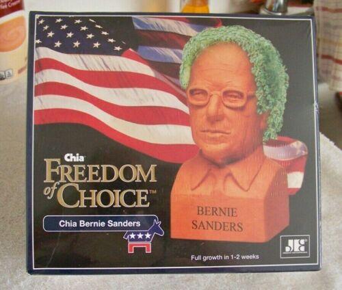 Chia Pet Bernie Sanders NIB