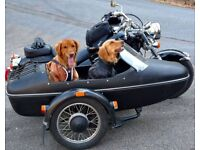 BARKING BIKERS