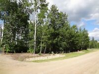 Emma Lake Lot for Sale