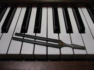Piano Tuner/Technician