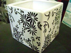 white/black floral pattern planter