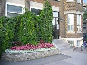 Location de chambres Montreal / Room Rental (pas une colocation) City of Montréal Greater Montréal image 4