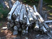 Cedar Fence Round Fence Posts (Updated 20 Oct. 2014)