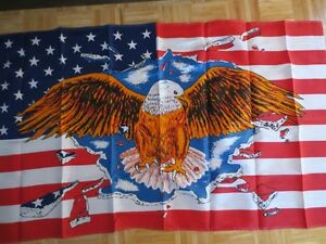 Eagle on U.S.A. Flag