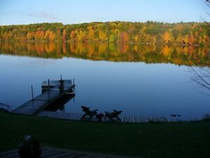 cottage for rent on Graham Lake AVAILABLE THIS WEEK Aug 17-23 Canada image 4