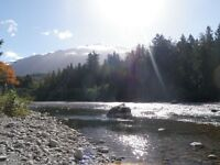 Last minute availability. Cabin by Chilliwack River.