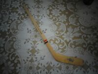Fredericton Express Mini Hockey Stick