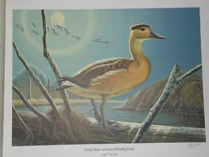 Ducks Unlimited Waterfowl of North America St. John's Newfoundland image 3
