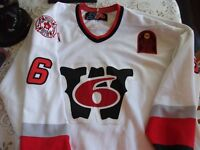Worcester AHL Game Worn Jersey