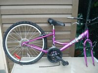 Raleigh Girl's 24 in.bike. Needs front wheel, gear shift, &chain