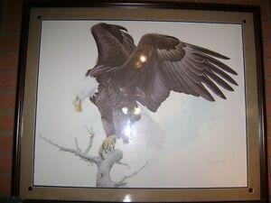 Glen Loates Bald Eagle 1982 Set