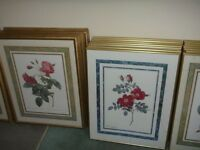 Framed Pictures $10.00 each
