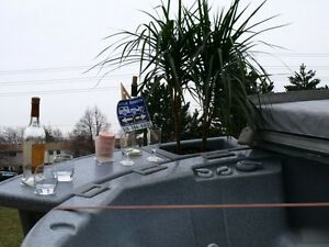 Hot tubs for rent. $250 a week or $475 a month. Sarnia Sarnia Area image 4