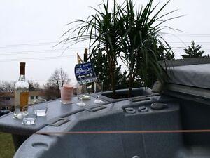 HOT DEALS ON Hot tubs for rent. $200/WK or $400/MO. OFF SEASON!! Sarnia Sarnia Area image 4
