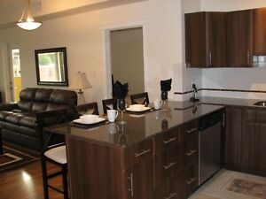 Furnished 2Bed2Bath Exec Condo Oliver/3Blocks off Jasper Ave Edmonton Edmonton Area image 3
