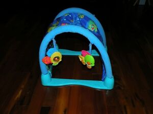Tunnel Fisher Price