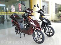 Electric EAPC -Moped - Scooter 48v 250w ride from 14