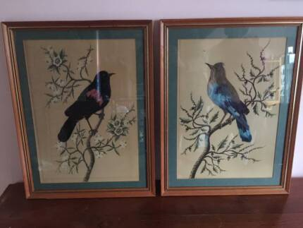 pair of antique real bird feather pictures