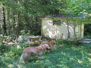 A qui la chance...2662 route du Lac Vert, St-Nérée (Bellechasse) Québec City Québec image 1