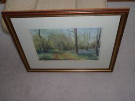 The Woodland Path - Framed Watercolour Print