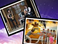 Go Tell Alice & The Beach Boyz Tribute Band Live in Concert at the Sheldon Open Air Theatre