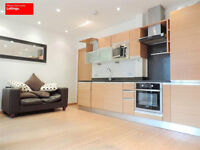 STUNNING 1 BEDROOM DUPLEX APARTMENT IN CANARY WHARF AVAILABLE NOW E14 WITH PARKING