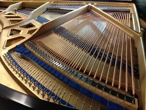 Piano Tuning and Repair - Master Piano Services Kitchener / Waterloo Kitchener Area image 3